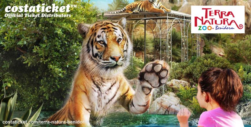 Terra Natura Tiger